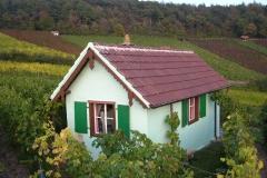Das Grüne Haus