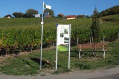 """Wanderweg """"Falkenberger Hüttentour"""" 3,5 km"""